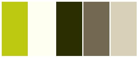 Farbgestaltung 5 - modern - braun